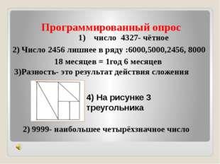 Программированный опрос 1) число 4327- чётное 2) Число 2456 лишнее в ряду :60