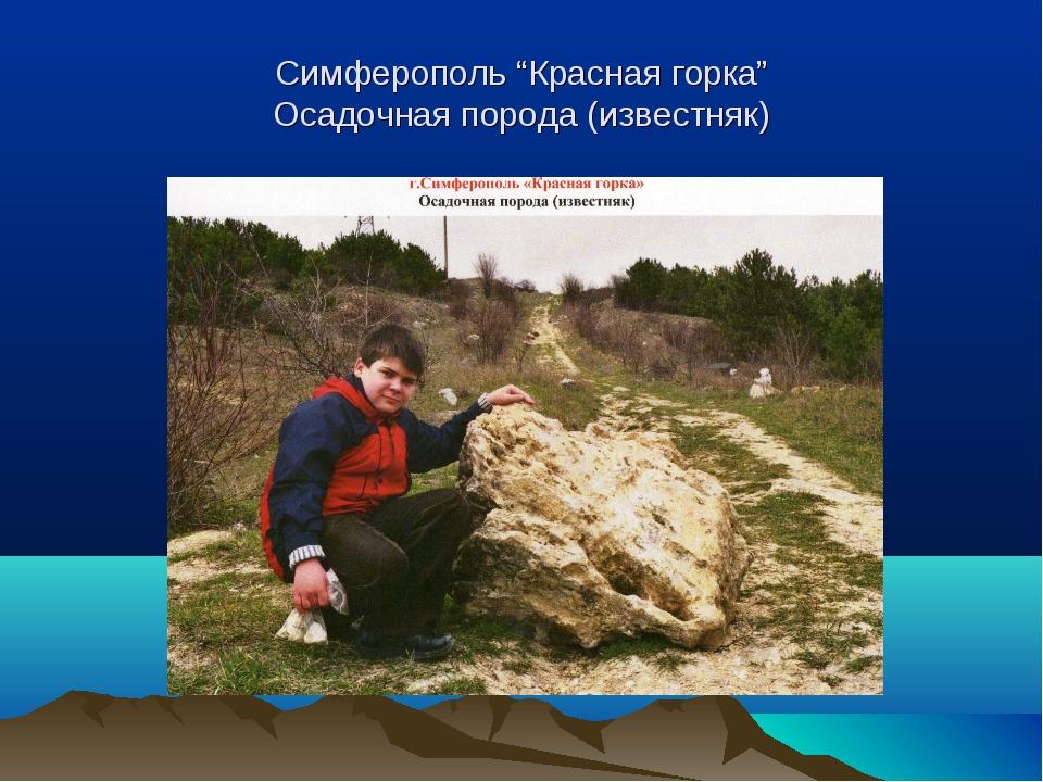 """Симферополь """"Красная горка"""" Осадочная порода (известняк)"""