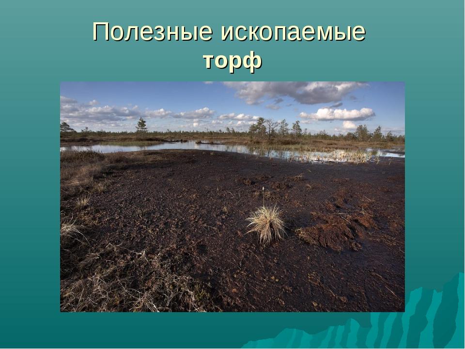 Полезные ископаемые торф
