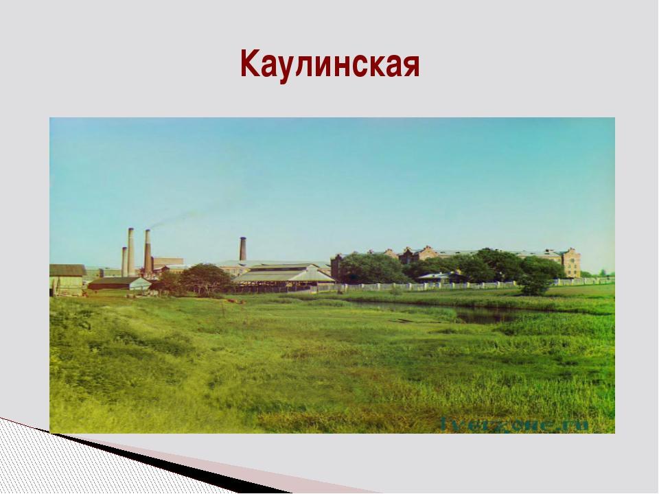 Каулинская