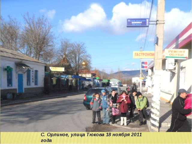 С. Орлиное, улица Тюкова 18 ноября 2011 года