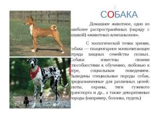 СОБАКА Домашнее животное, одно из наиболее распространённых (наряду с кошкой