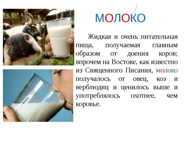 МОЛОКО Жидкая и очень питательная пища, получаемая главным образом от доения...