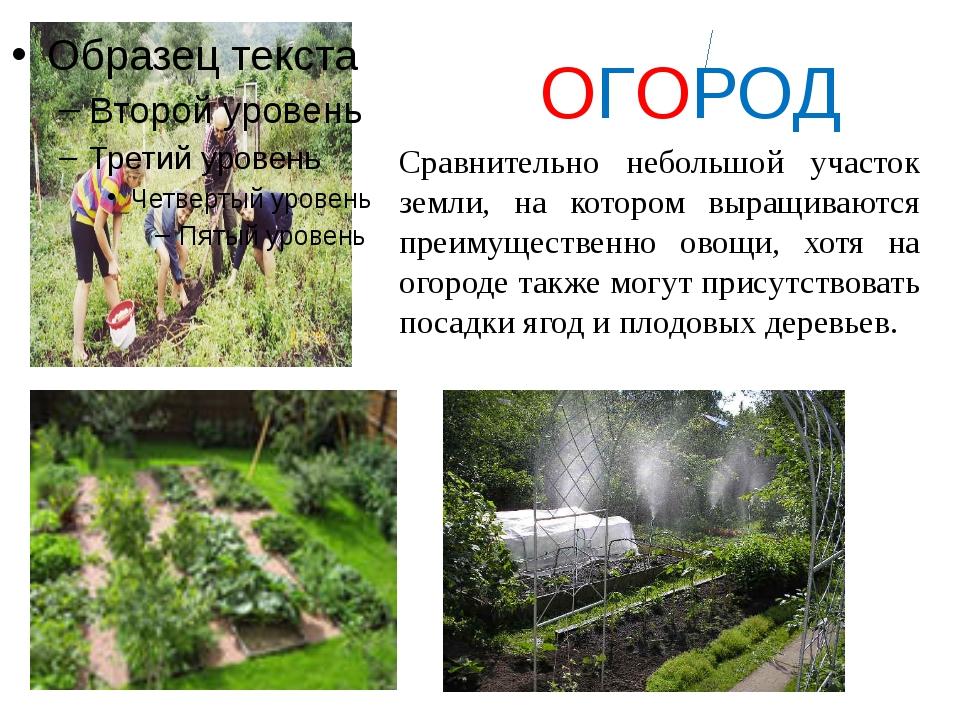 ОГОРОД Сравнительно небольшой участок земли, на котором выращиваются преимущ...
