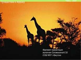 Путешествие в Африку Фрагмент презентации выполнен Соломыкиной Е.В. СОШ №57 г