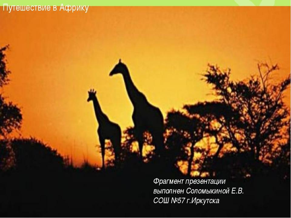 Путешествие в Африку Фрагмент презентации выполнен Соломыкиной Е.В. СОШ №57 г...