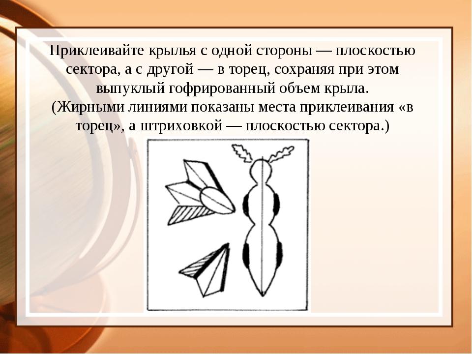 Приклеивайте крылья с одной стороны — плоскостью сектора, а с другой — в торе...