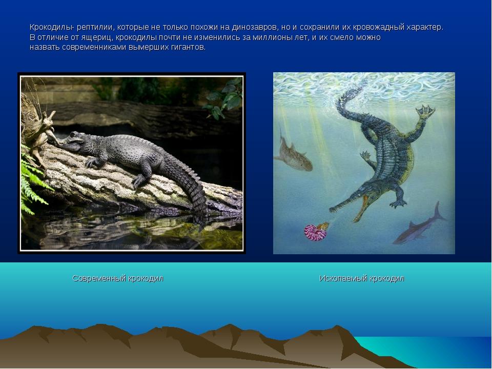 Крокодилы- рептилии, которые не только похожи на динозавров, но и сохранили и...