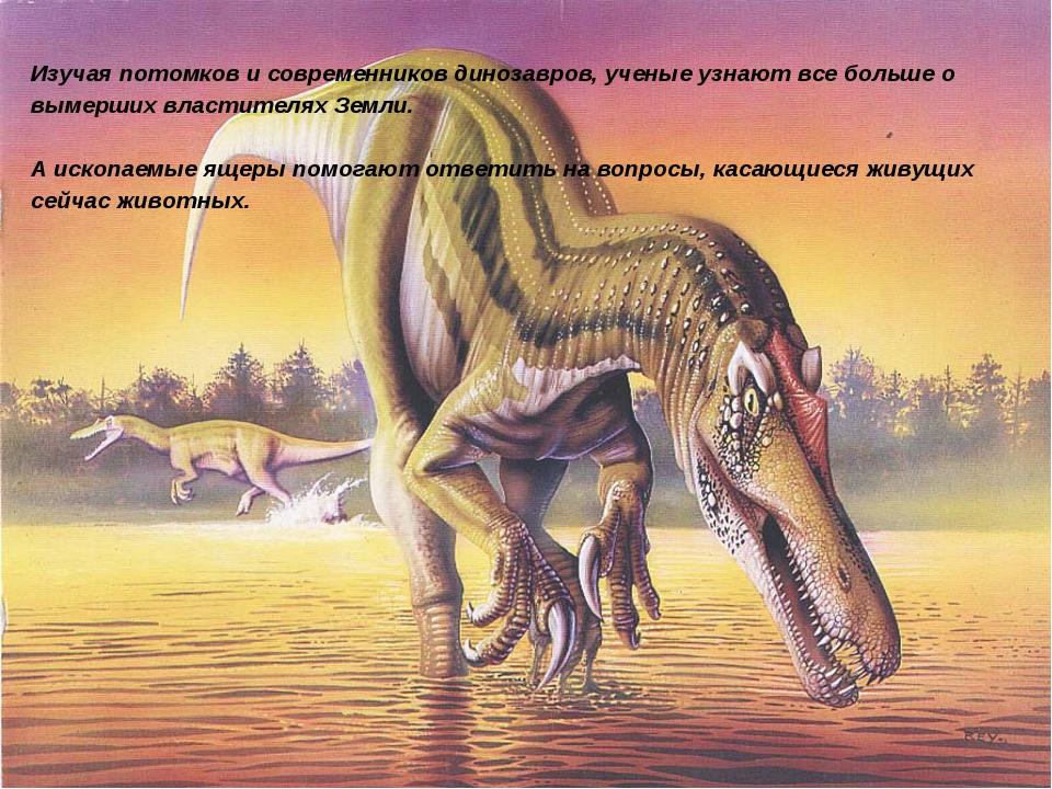 Изучая потомков и современников динозавров, ученые узнают все больше о вымерш...