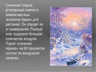 Снежный покров, устилающий землю в зимние месяцы, жизненно важен для растени