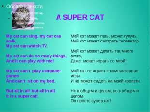A SUPER CAT My cat can sing, my cat can walk, My cat can watch TV. My cat ca