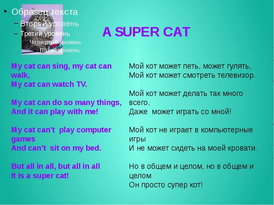 A SUPER CAT My cat can sing, my cat can walk, My cat can watch TV. My cat ca...