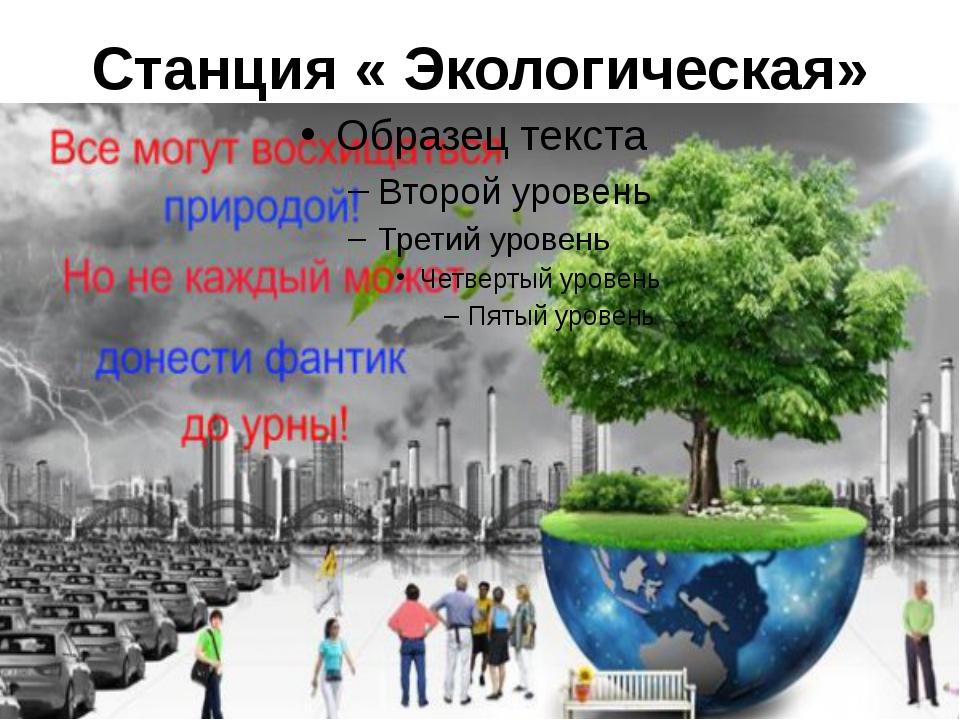 Станция « Экологическая»