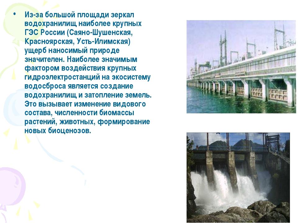 Из-за большой площади зеркал водохранилищ наиболее крупных ГЭС России (Саяно-...