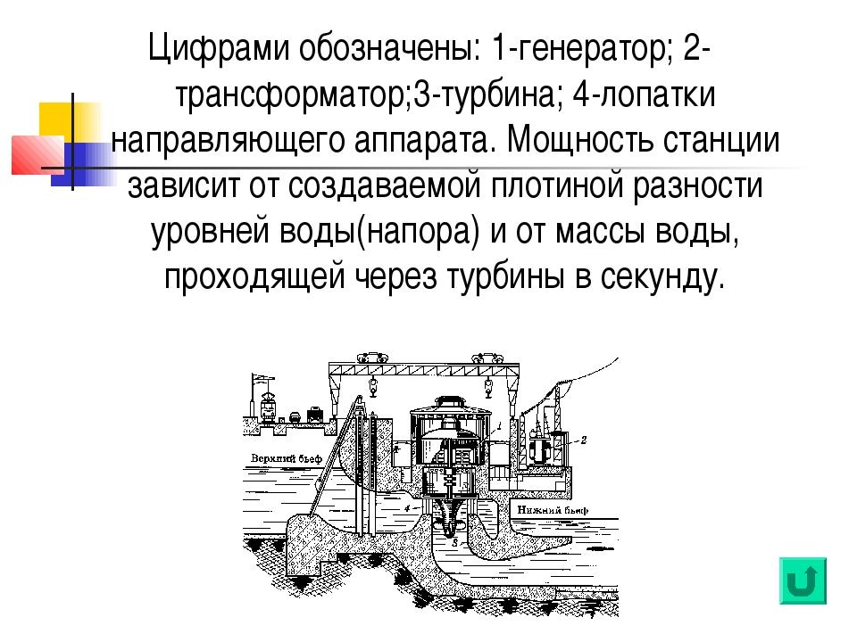 Цифрами обозначены: 1-генератор; 2-трансформатор;3-турбина; 4-лопатки направл...