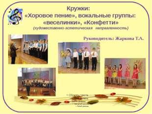 Кружки: «Хоровое пение», вокальные группы: «веселинки», «Конфетти» (художеств