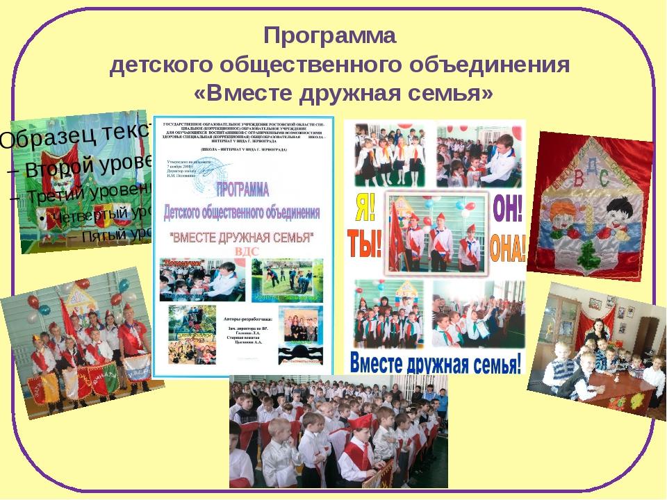 Программа детского общественного объединения «Вместе дружная семья»