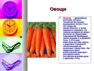 Овощи Морковь — древнейшее растение, которое человечество начало выращивать б