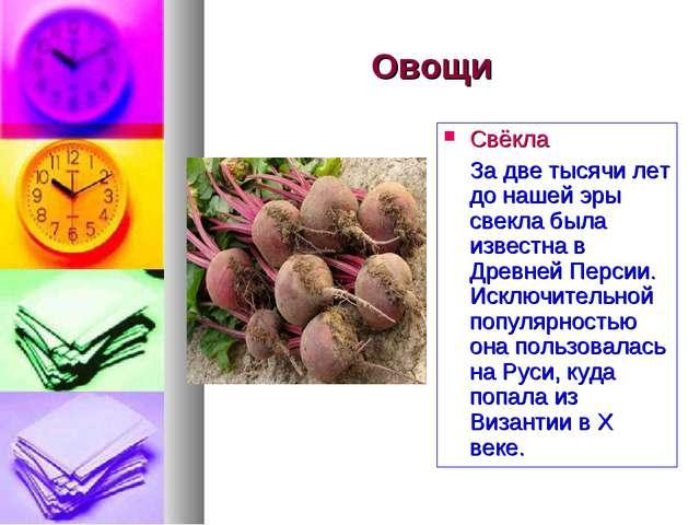 Овощи Свёкла За две тысячи лет до нашей эры свекла была известна в Древней Пе...