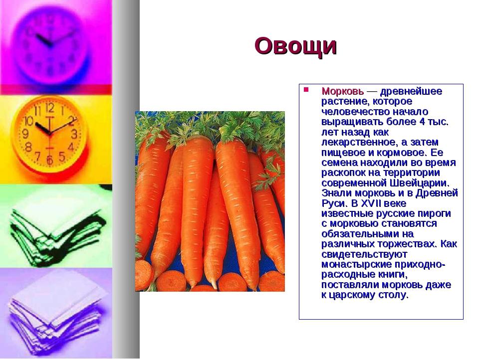 Овощи Морковь — древнейшее растение, которое человечество начало выращивать б...