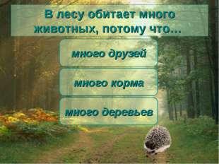 В лесу обитает много животных, потому что… много корма много друзей много дер