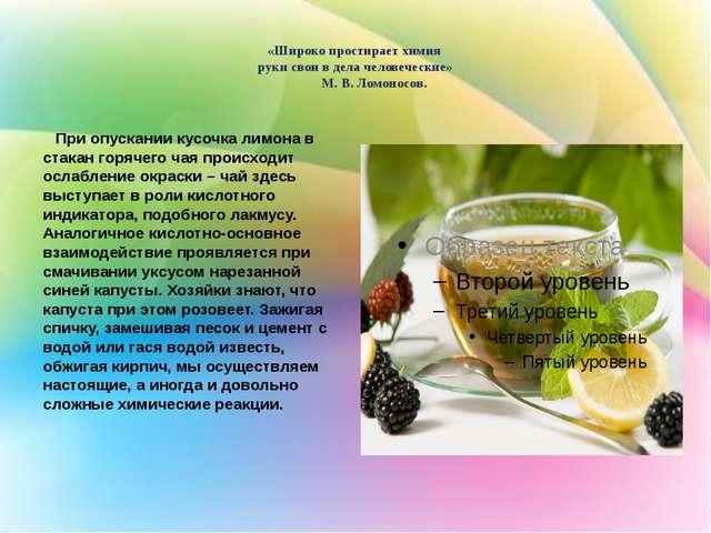 «Широко простирает химия руки свои в дела человеческие» М. В. Ломоносов. При...