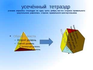Вторую группу составляют два тела, называемых квазиправильными многогранникам