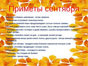Приметы сентября Начали собирать шиповник - осень пришла. Багульник отпугивае