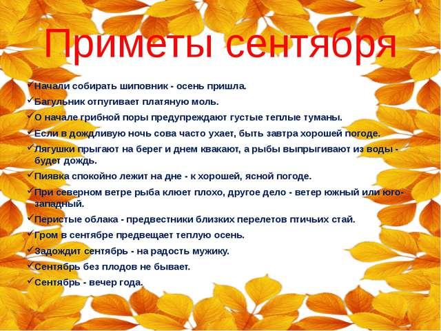 Приметы сентября Начали собирать шиповник - осень пришла. Багульник отпугивае...