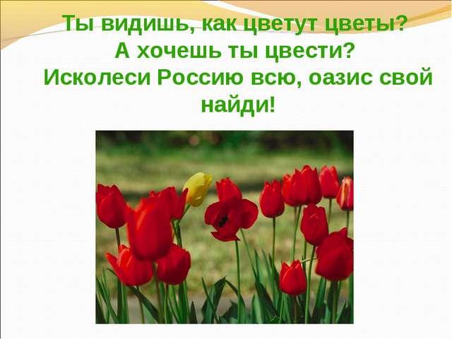 Ты видишь, как цветут цветы? А хочешь ты цвести? Исколеси Россию всю, оазис...