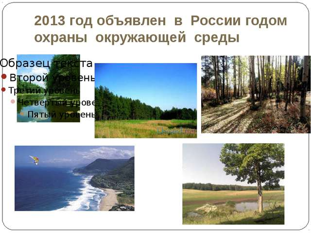 2013 год объявлен в России годом охраны окружающей среды