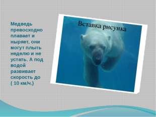 Медведь превосходно плавает и ныряет, они могут плыть неделю и не устать. А п