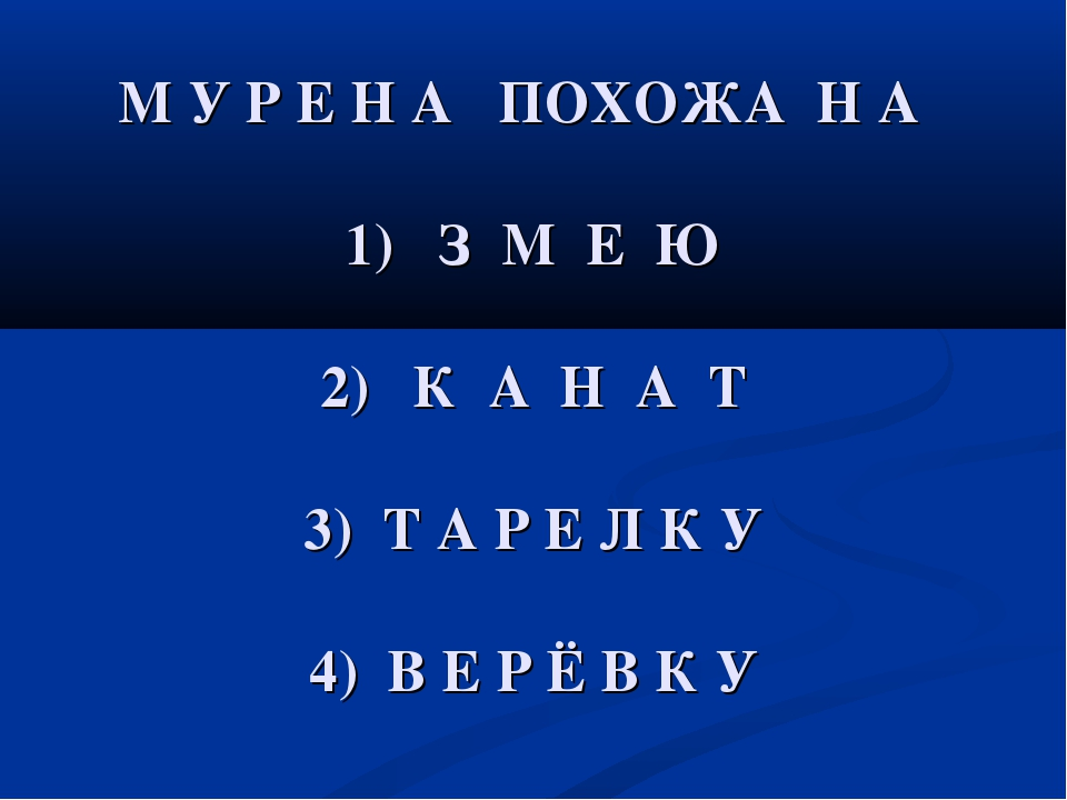 М У Р Е Н А ПОХОЖА Н А 1) З М Е Ю 2) К А Н А Т 3) Т А Р Е Л К У 4) В Е Р Ё В...