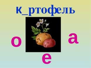 к_ртофель а о е
