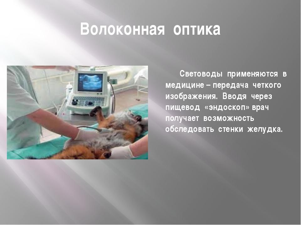 Волоконная оптика Световоды применяются в медицине – передача четкого изображ...