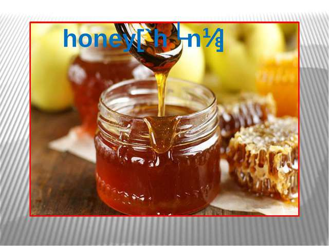 honey[`hʌnɪ]