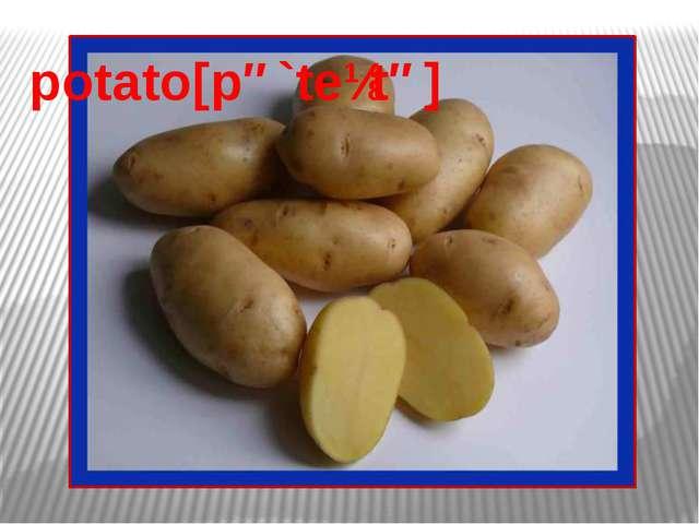 potato[pə`teɪtə]