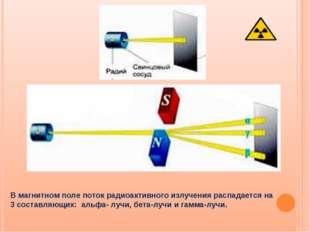 В магнитном поле поток радиоактивного излучения распадается на 3 составляющих