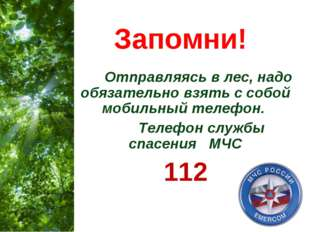 Запомни! Отправляясь в лес, надо обязательно взять с собой мобильный телефон.
