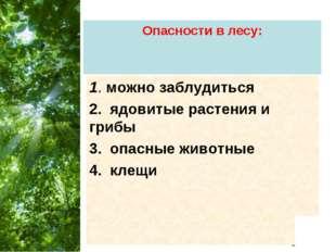 Опасности в лесу: 1. можно заблудиться 2. ядовитые растения и грибы 3. опасны
