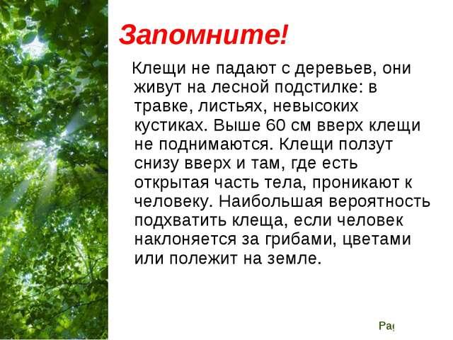 Запомните! Клещи не падают с деревьев, они живут на лесной подстилке: в травк...