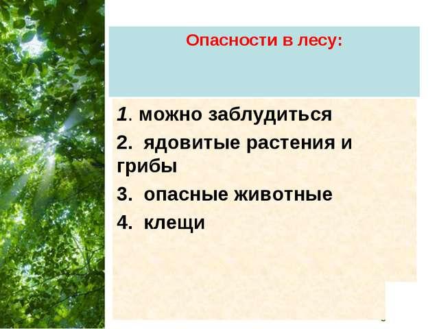 Опасности в лесу: 1. можно заблудиться 2. ядовитые растения и грибы 3. опасны...