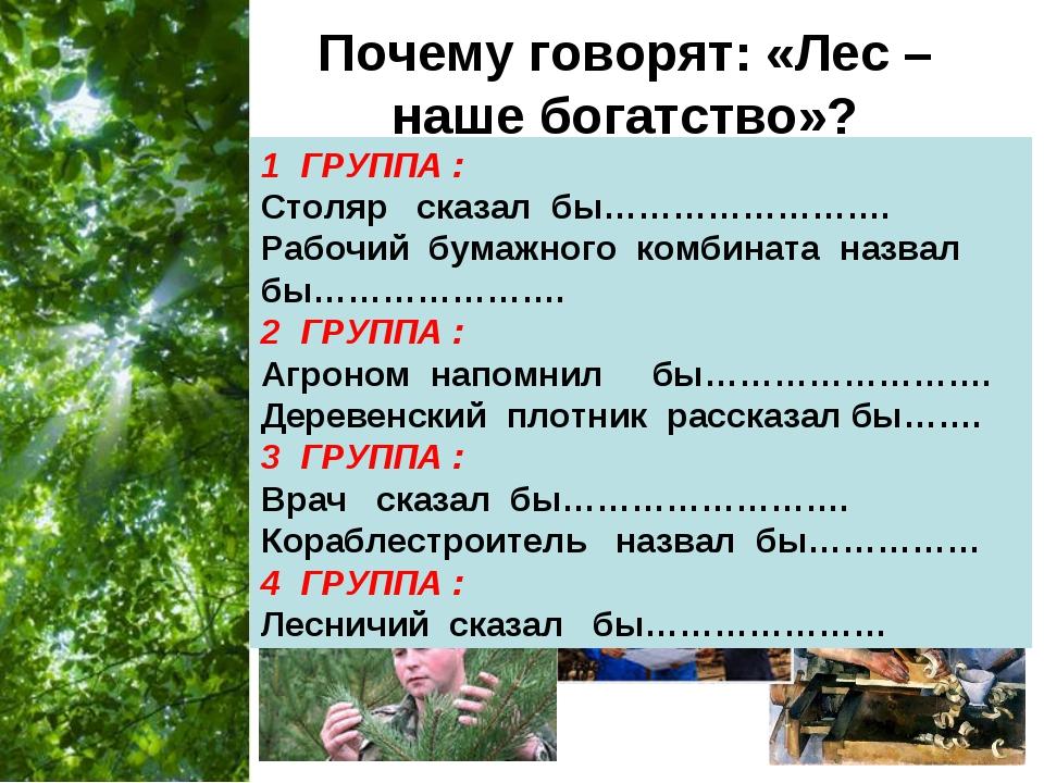Почему говорят: «Лес – наше богатство»? 1 ГРУППА : Столяр сказал бы……………………....