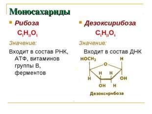 Моносахариды Рибоза С5Н10О5 Значение: Входит в состав РНК, АТФ, витаминов гру