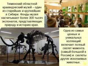 Экспозиции и выставки музея постоянно обновляются. Здание музея охраняется к