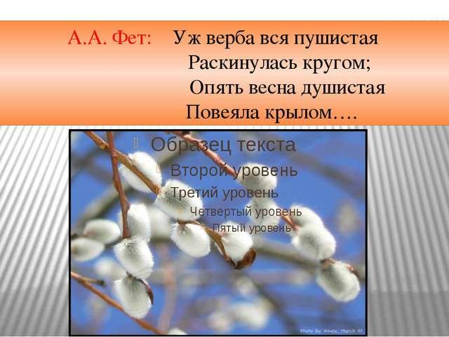 А.А. Фет: Уж верба вся пушистая Раскинулась кругом; Опять весна душистая П...