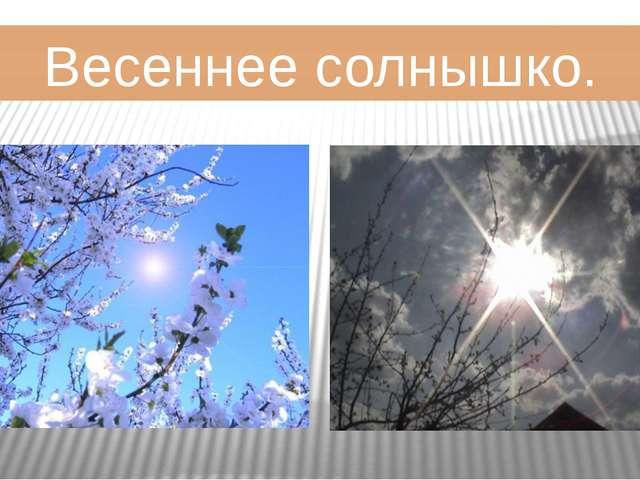 Весеннее солнышко.