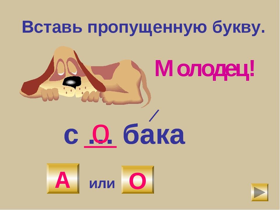 Вставь пропущенную букву. с … бака А или О с … бака о Молодец! А