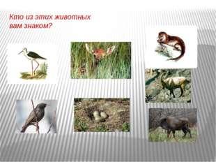 Кто из этих животных вам знаком?