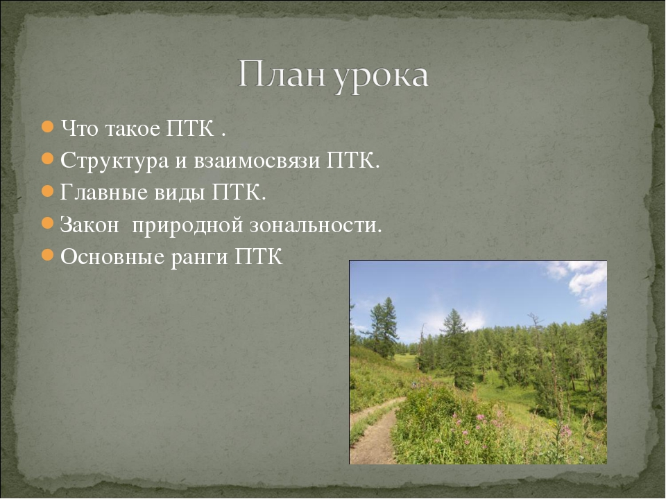 Что такое ПТК . Структура и взаимосвязи ПТК. Главные виды ПТК. Закон природно...
